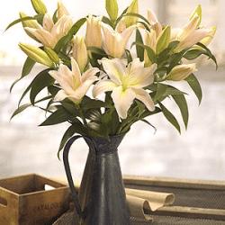 Lily jug